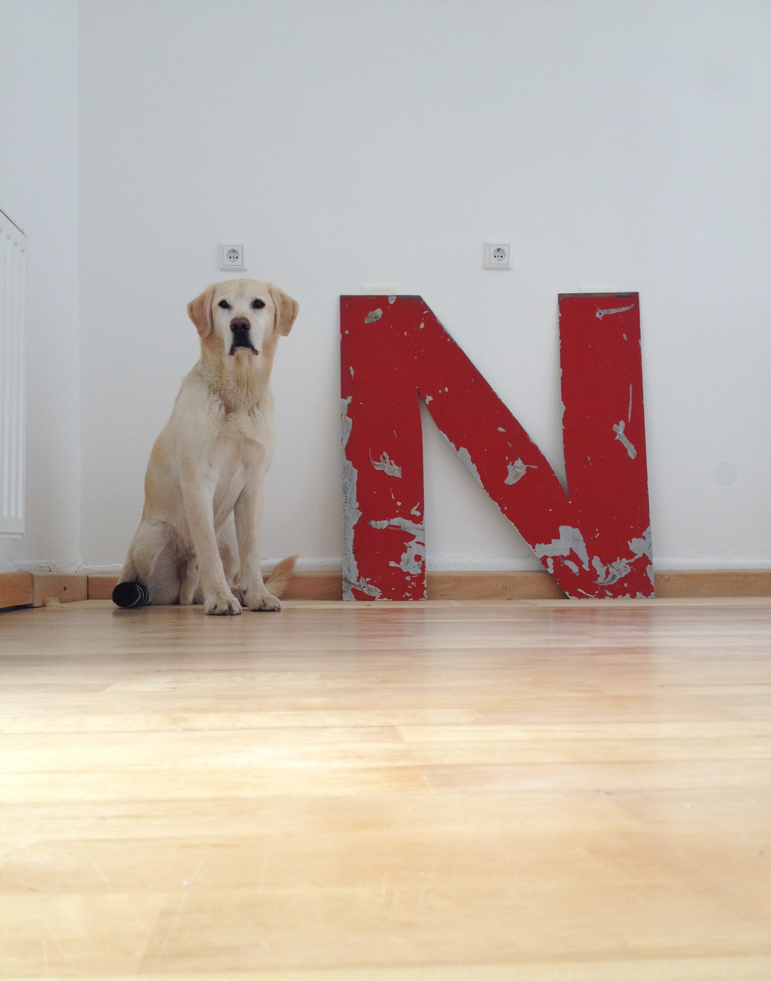Lou und das rote N